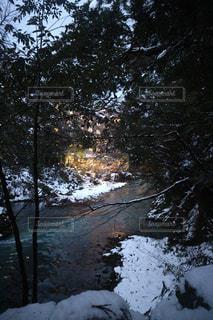 自然の写真・画像素材[361920]