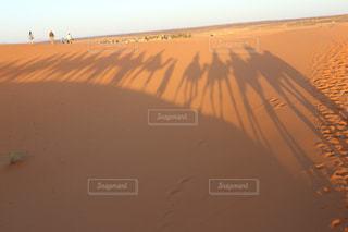 ビーチに沈む夕日の写真・画像素材[843082]