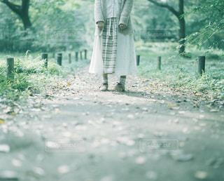 女性の写真・画像素材[221534]