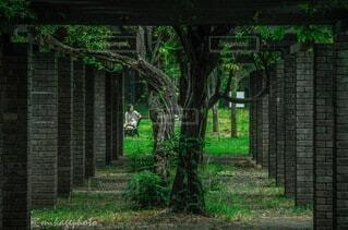 ロールプレイングのような写真の写真・画像素材[4835896]