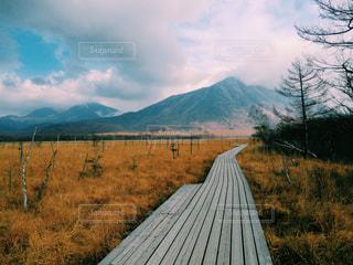 自然の写真・画像素材[228340]
