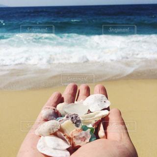 海の写真・画像素材[533761]
