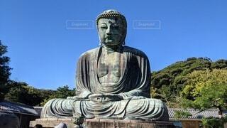 鎌倉の大仏の写真・画像素材[4842723]