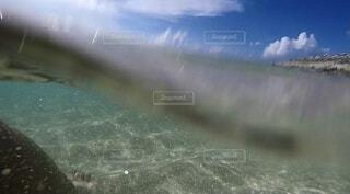 空と海の写真・画像素材[4872242]