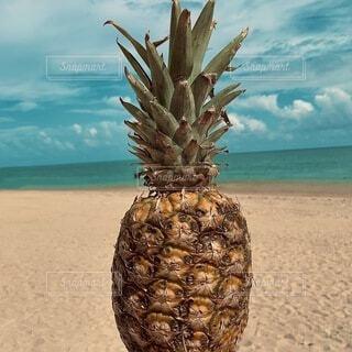 パイナップルと海の写真・画像素材[4873677]