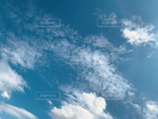 薄い雲の写真・画像素材[4876171]