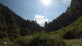 景色の写真・画像素材[218068]