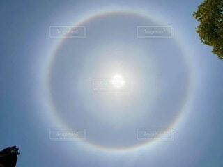 ハロの写真・画像素材[4849006]