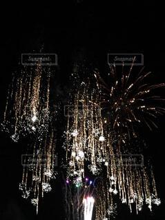 枝垂れ花火の写真・画像素材[4868667]