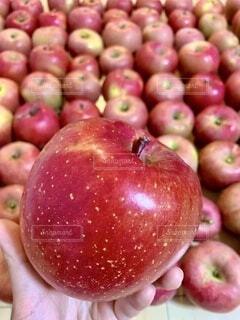 林檎の山の写真・画像素材[4868692]