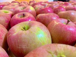林檎の絨毯の写真・画像素材[4868704]