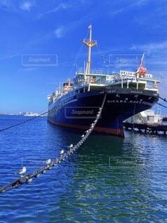 水の体の中の大きな船の写真・画像素材[4854828]