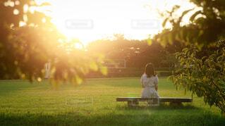 公園のベンチに座っている人の写真・画像素材[4925273]