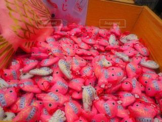 ピンクの写真・画像素材[226032]