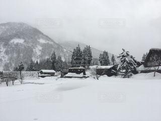 No.339702 雪