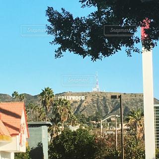 ハリウッドサインの写真・画像素材[541097]
