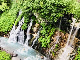 森の中の滝の写真・画像素材[1275167]