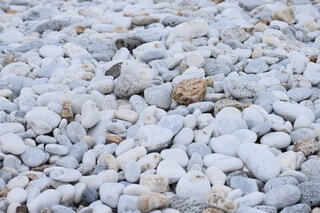 りんくうアウトレットマーブルビーチの写真・画像素材[4863440]