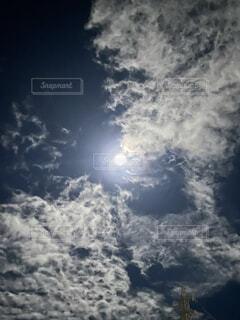 お月見の写真・画像素材[4871748]