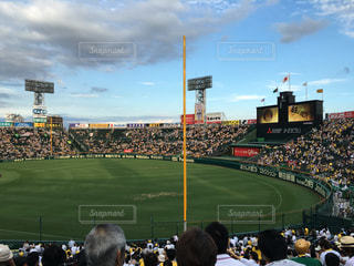 野球の写真・画像素材[219141]