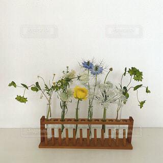 テーブルの上に花の花瓶の写真・画像素材[4872970]