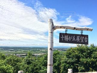 風景 - No.331566