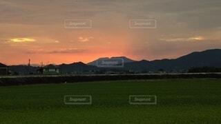 空に雲が立つ大きな緑の畑の写真・画像素材[4872934]