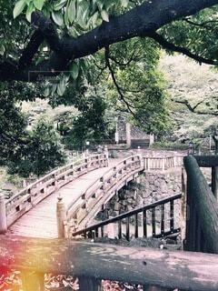 昔を感じさせる橋の写真・画像素材[4864431]