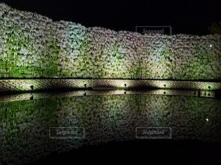 水面 反射の写真・画像素材[4868054]