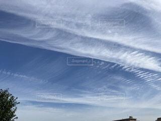雲の絨毯の写真・画像素材[4861728]