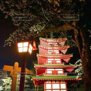 夜桜と忠霊塔の写真・画像素材[4865726]