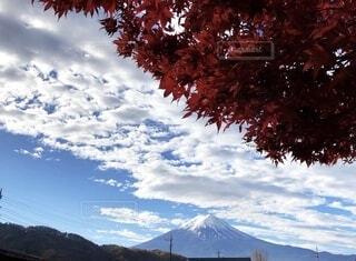 トリコロールの空と富士山の写真・画像素材[4865738]