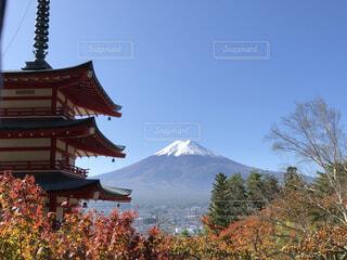 忠霊塔と富士山と紅葉の写真・画像素材[4866199]