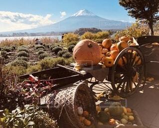 Country Halloweenの写真・画像素材[4866239]