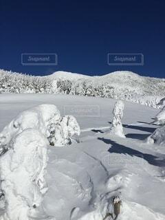雪の中に立っている人のカップルの写真・画像素材[4863720]