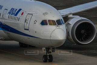 飛行機の写真・画像素材[4862546]