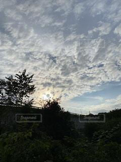 田舎の夕方 西陽と雲の流れが素敵でしたの写真・画像素材[4873924]