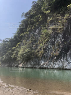 木の隣の水の写真・画像素材[4863265]