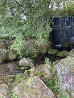 公園にある滝の写真・画像素材[4949145]