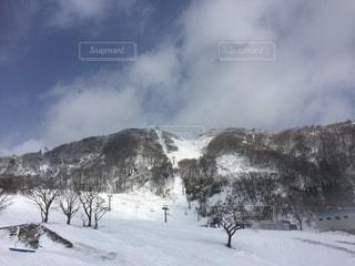 雪の写真・画像素材[220167]