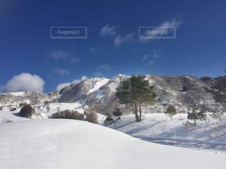 雪景色 - No.220172
