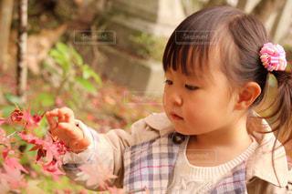 子どもの写真・画像素材[221264]