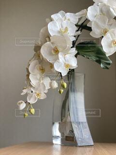 テーブルの上の花の写真・画像素材[4873807]