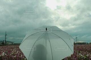 曇りの日に傘を閉じるの写真・画像素材[4876197]