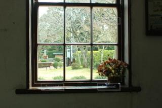 窓枠に飾られた花の写真・画像素材[4879876]