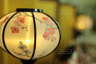 ぼんぼりの灯りの写真・画像素材[4881885]