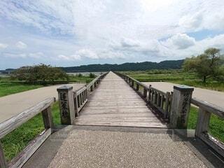 あなたも世界一長い木造の橋を渡ってみませんか?の写真・画像素材[4880893]