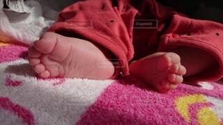 ピンクの毛布を持った手の写真・画像素材[4875884]