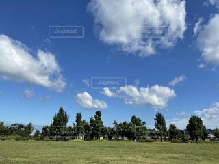 緑の大地と青い空の写真・画像素材[4877903]