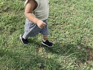芝生の上を歩く子供の写真・画像素材[4922637]